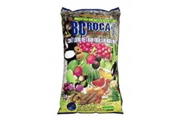 BCROCA-10-3-20