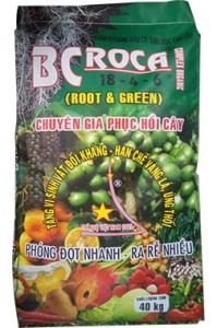 BCROCA 18-4-6