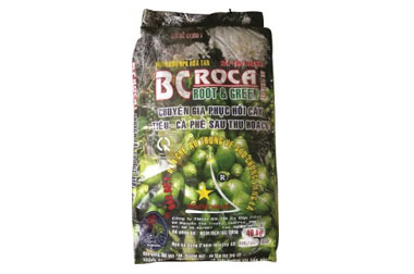 BCROCA-ROOT-&-GREEN