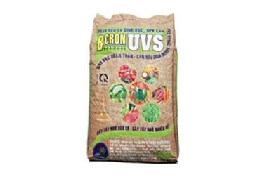 BCRON-UVS--5-5-5