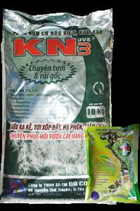 KN3_W