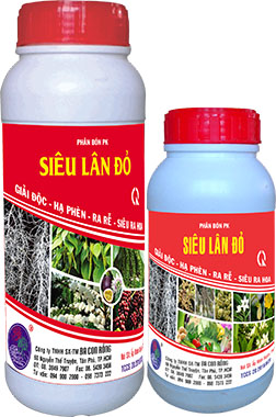 SIEU LAN DO